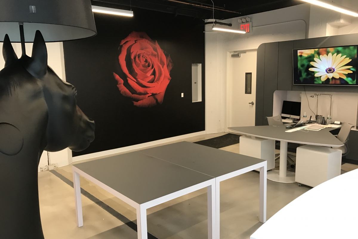 Gamma & Bross New York Showroom Now Completed! - picture #10